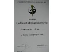 dyplom2
